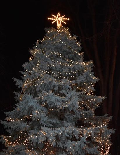 Lighting Up the Holiday Season
