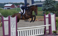 Horseback Riding – It Looks Easy, but is it Really?