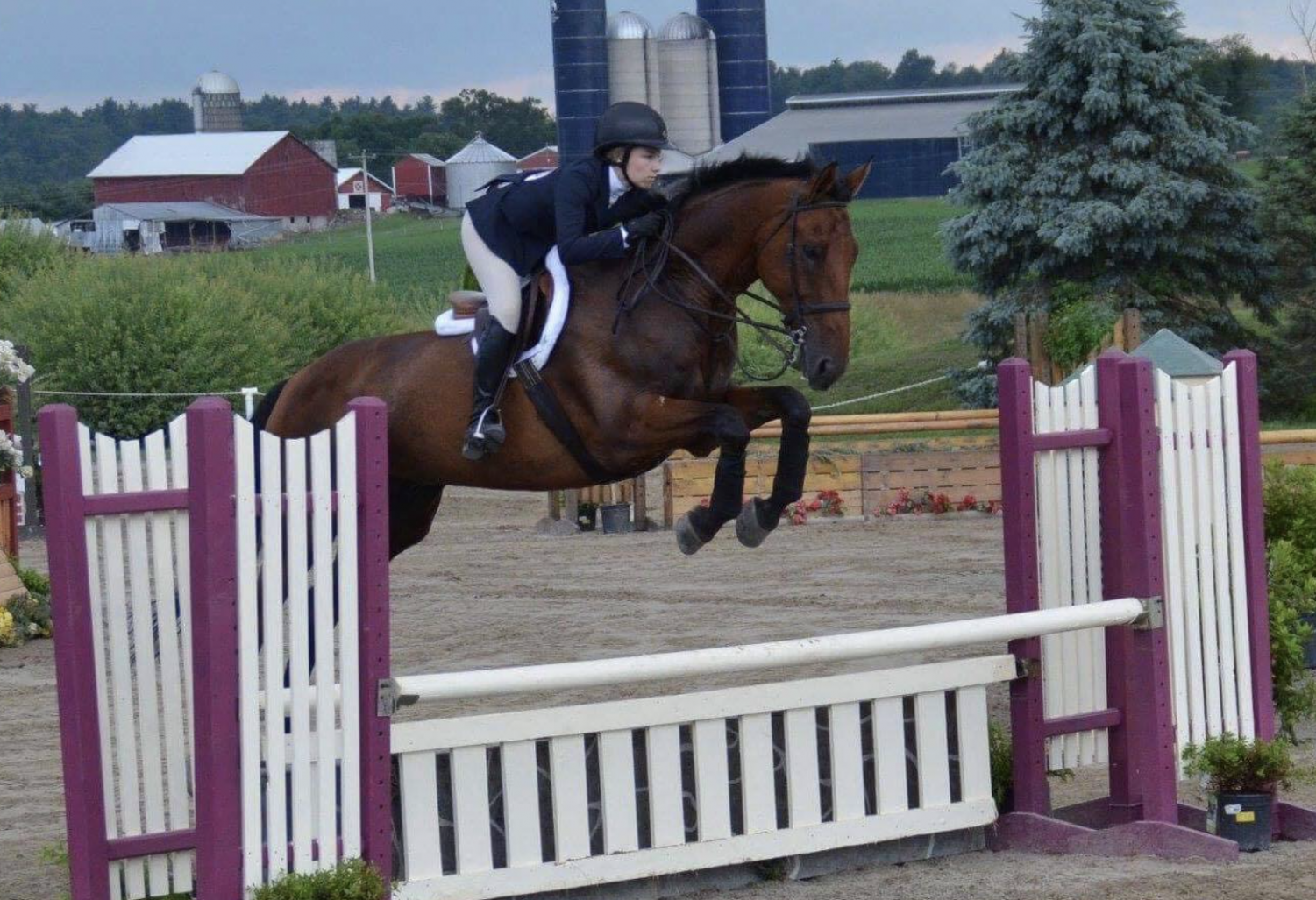 """Senior, Cameryn Rousselin, an English Rider rides one of her horses at a competition. Horseback Riding is an extracurricular activity that is not connected to the school, however many students from State High still compete. Rousselin said """"I travel as far down as Virginia and as far up as New York."""""""