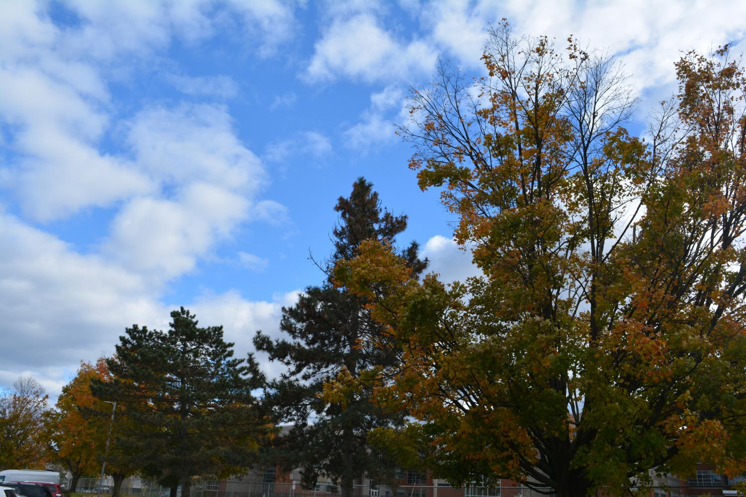 This year, State College experienced an extreme shift in weather when  transitioning from summer to fall. But what do these extreme weather conditions mean for the future of fall? Photo by: Adrita Talukder