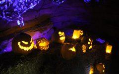 Jack-o'-Lanterns Light Up the Night at the Arboretum Annual Pumpkin Festival