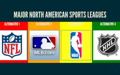 The NHL is the Best Professional Sports League in all of Sports