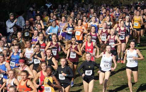 Runners Cross State for Cross Country States