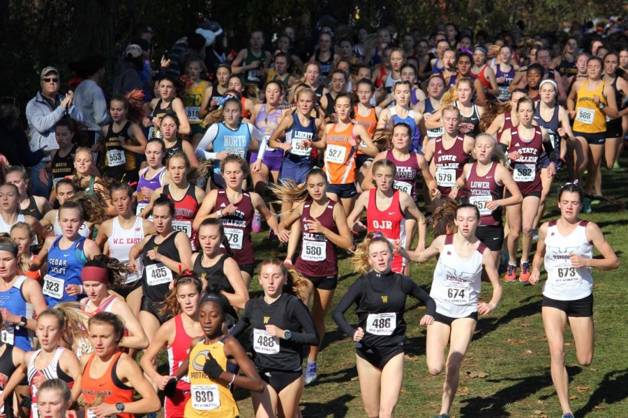 "Girls' cross country competitors swarm across the start line on November 2nd for the PIAA State meet. ""This was what we had been training for, and I was ready,"" State College freshman Marlee Kwasnica said. Kwasnica finished in seventh place with a time of 19:09."