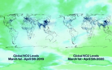 """With factories that impact carbon emissions being shut down due to the pandemic, the carbon emissions in our atmosphere are starting to decrease. """"Global carbon emissions were expected to rise this year, but instead might fall by around 5%,"""" the Global Carbon Project said."""