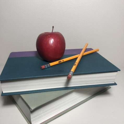 The photograph was taken on November 19, 2020.  Inside the photo there is an apple sitting upon two books alongside with two pencils. The image represents school as well as education.