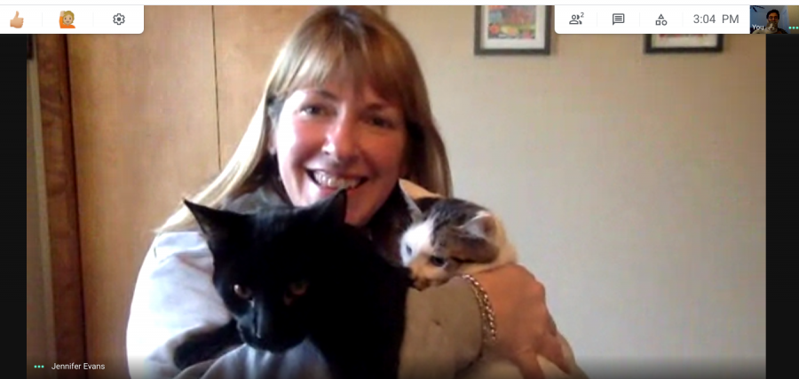 English+teacher+Jennifer+Evans+holding+two+of+her+four+rescued+kittens+during+a+Google+Meet+interview
