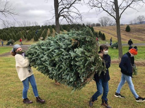Isabelle, senior, Elijah, sophomore, and Luca, eighth grader, Snyder carry their freshly cut Christmas tree at Tannenbaum Farms in Centre Hall, PA. An annual tradition, the Snyder family has been cutting down their own tree at a local farm since Isabelle was in elementary school.